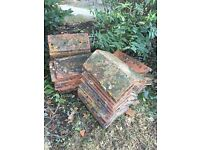 terracotta ridge tiles for sale