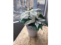 Plastic plant with pot