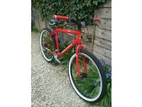 *SOLD* Custom Raleigh Max Mountain Bike