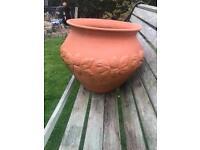 Large Terracotta pot