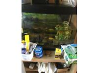 Fish Tank + Extras Selling As Is - House Clearance