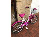 Brand new Girls 20 Inch Paris Bike