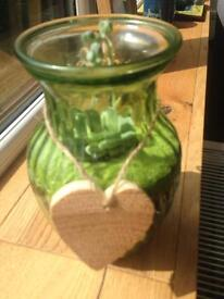 Glass vase with Succulent plant