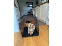 Small Dog Crate / travel crate (RAC)