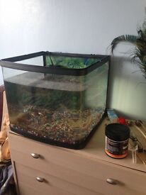 Fish tank with heater and 2 filters