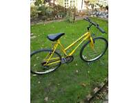 "Full size townsend mountain bike 19"" frame"
