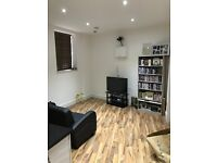 Brand new stunning and spacious 1 double bedroom flat in South Bermondsey 10 min to London Bridge