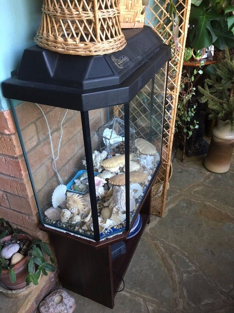 REDUCED now only £125 ONO Fish tank with stand, electric filter, heater, plants & light