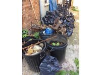 Free bags of soil / earth available (for collection only)