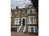 N16 Stamford Hill / Stoke Newington - 2 bedroom flat in lovely Victorian building