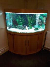 Corner Fish Tank Juwel 350