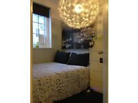 Amazing Room in Two bedroom apartment, NW6