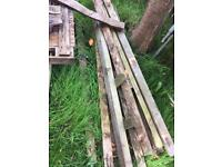 Free wood- lengths, sheets, pallets and two trees if willing to cut down,