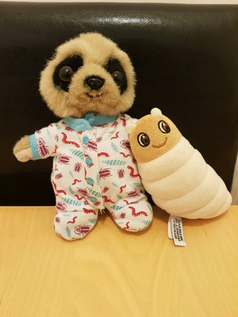 Compare the meerkat baby Oleg and grub