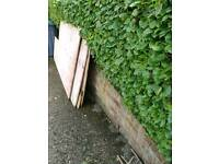 Used playwood boards forFREE