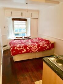 Shoreditch Brick Lane Studio Flat (Available 4th of Feb)