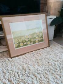 Framed daisy picture