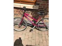Emmelle oasis ladies mountain bike