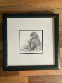 Anthony Wyatt Limited Edition Sketch Framed Print