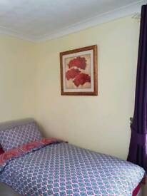 Brand new single room with attached shower and toilet
