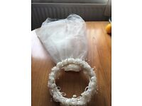 Bridal Veil & Flowered Headpiece