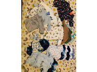 Newborn and first size baby boy clothing bundle