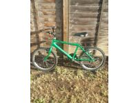 Raleigh Max Mountain Bike