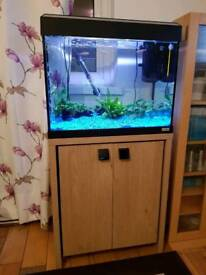 Fluval Roma 90fish tank and cabinet