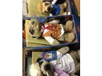 9 meerkats all different smoke free certificates