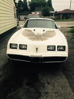 MINT!! 1979 Firebird Trans Am! Everything New!