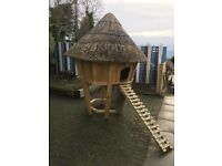 Thatched chicken house or coop