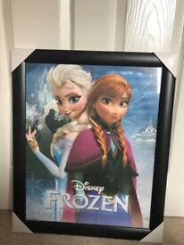 Frozen picture Brand new