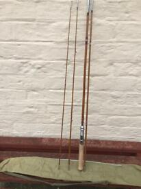 Fly fishing rod and carrying case