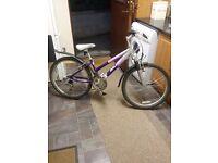Girls Raleigh Diva Bike