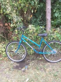 Girls Bicycle. Size 18 inches