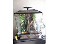 Exo terra terrarium 45x45x60 for crested gecko etc bio active