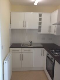 One Bedroom Secure Flat Available in Blackhill, Consett