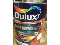 10 L Dulux masonry paint in Blue in Devon