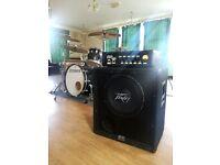 Peavey Black Widow bass guitar cab cabinet speaker