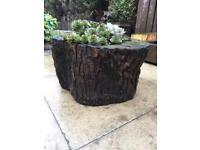 Log stump planter