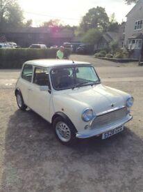 Immaculate low mileage classic Mini