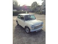 Immaculate low mileage classic Mini