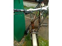 Hercules Commuter Men's Bicycle