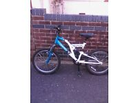 mountain bike 8-10yrs boys