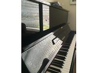 Piano / Voice professional and experienced teacher