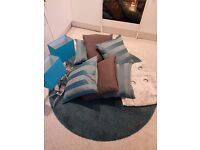 Teal rug, cushions, 2 lamps and curtains for sale!
