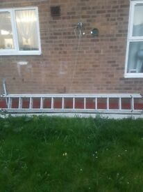 YOUNGMAN LADDERS 12 RUNGS !! TRIPLE EXTENSION £150