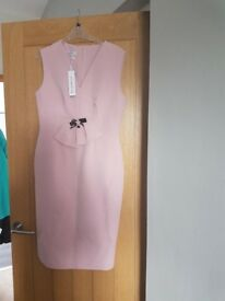 Ladies rinascimento blush dress brand new with tags never worn.