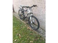Boys Saracen Mountain bike
