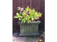 Wooden garden planter (heavy)